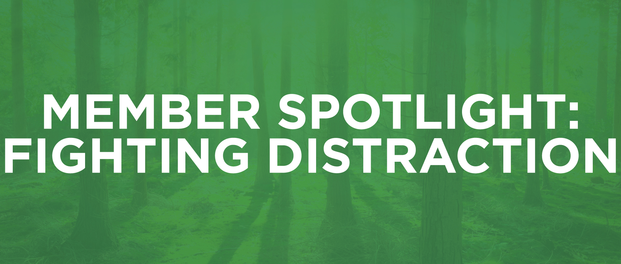 MemberSpotlight-2-Distraction.jpg
