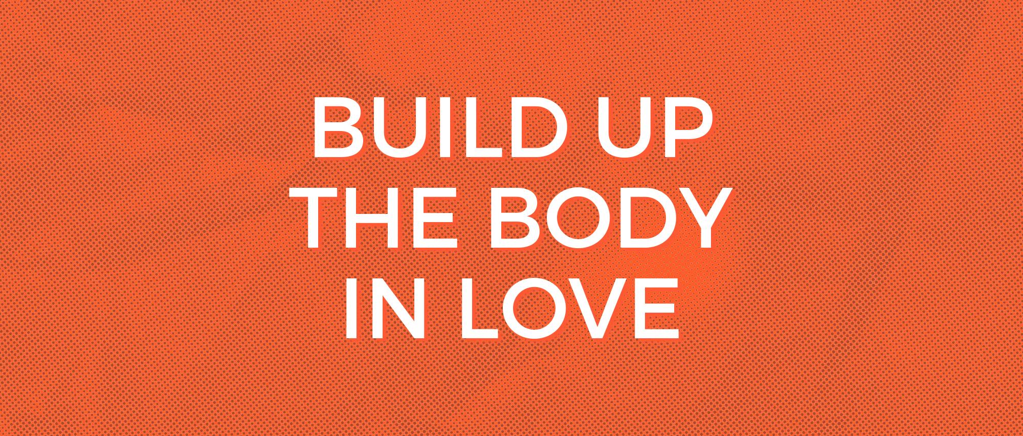 build up the body.jpg