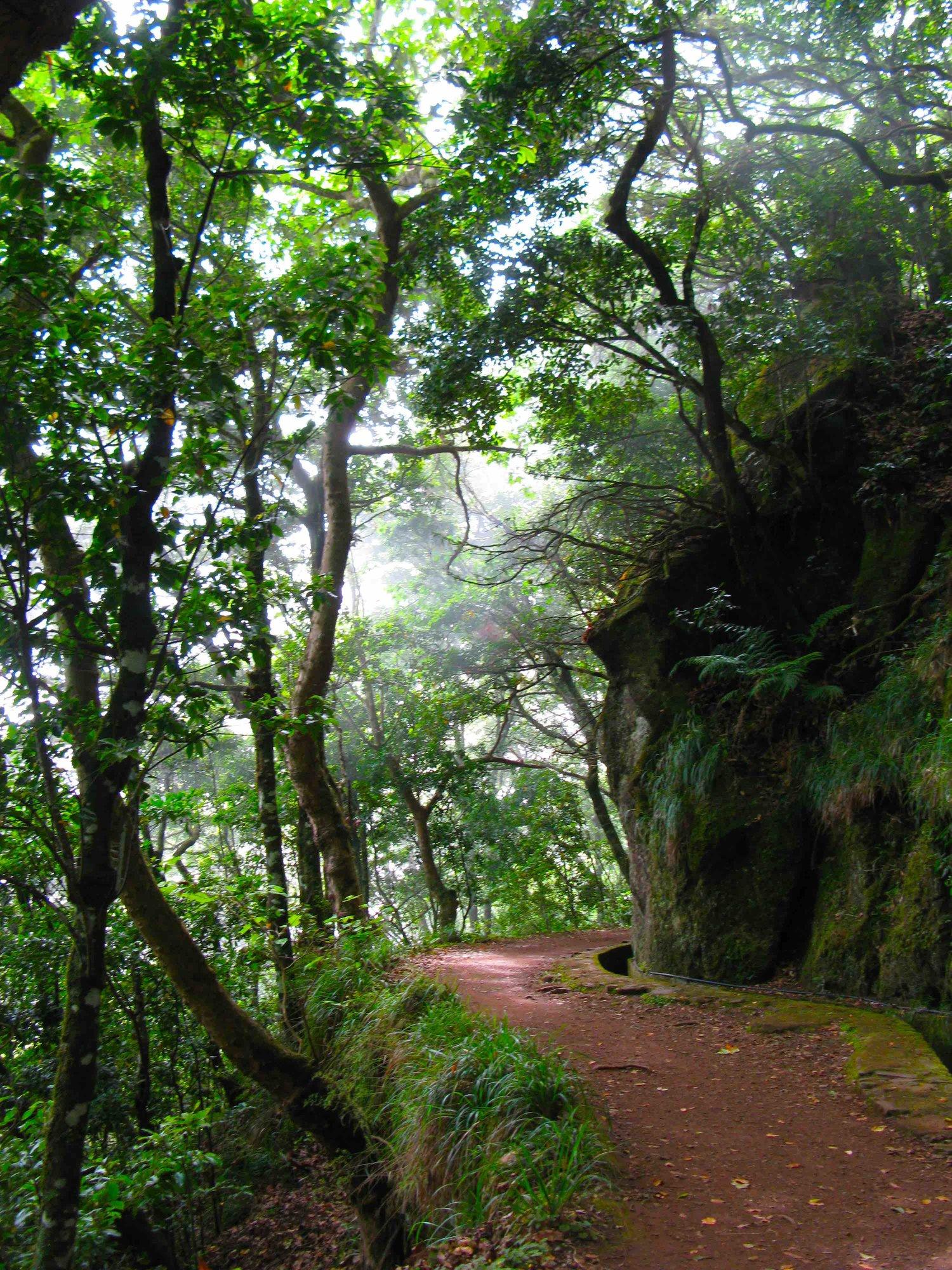 levada+Balcões+walk+path+IMG_8463+.jpg