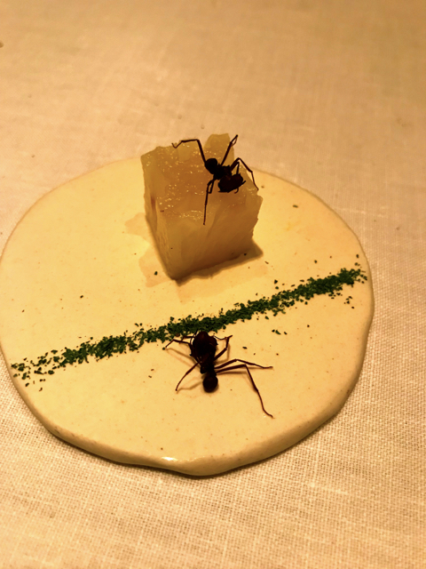 Ant Dessert