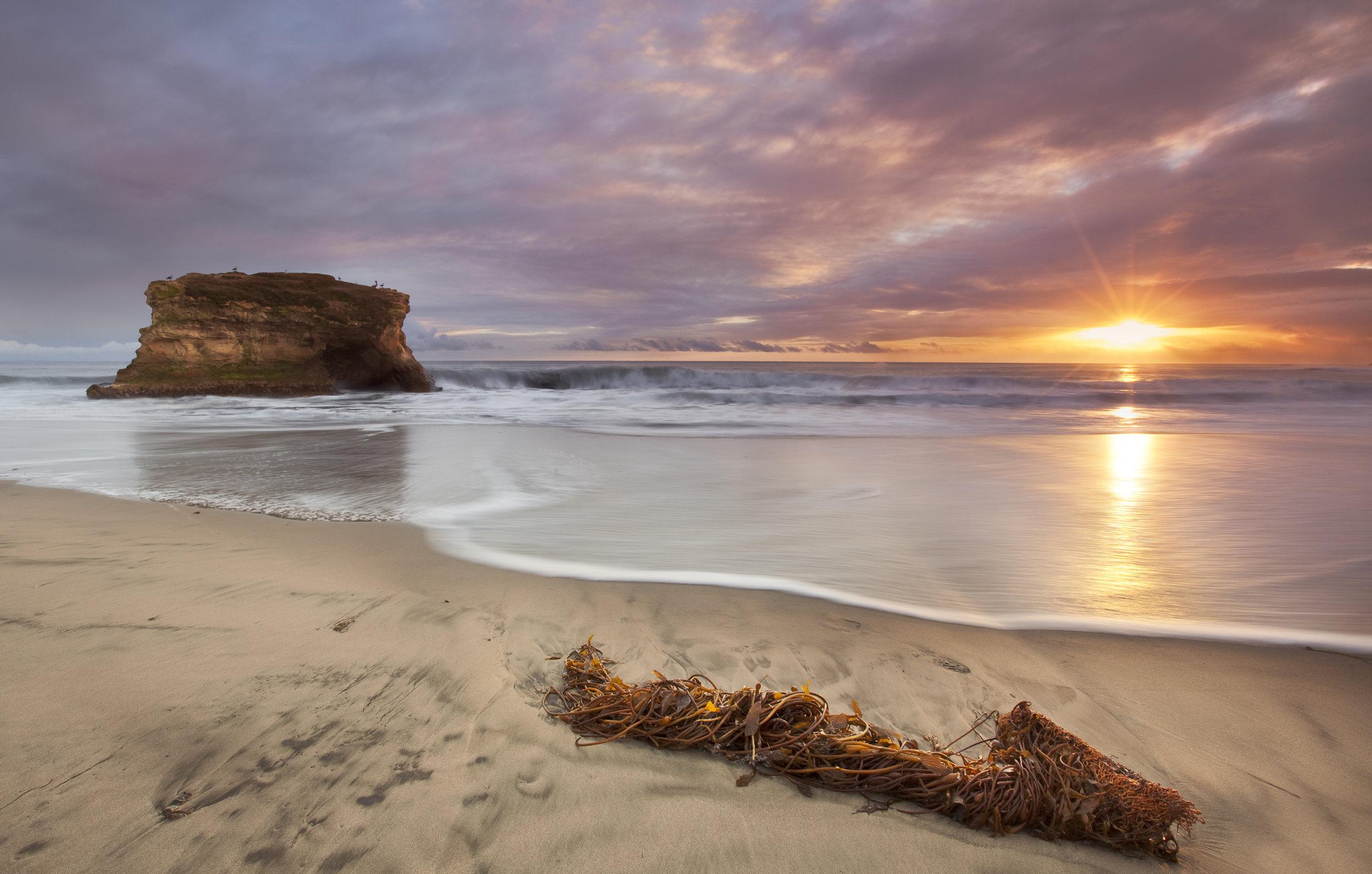 Santa Cruz - Photo Credit VSCC and James Wang.jpg