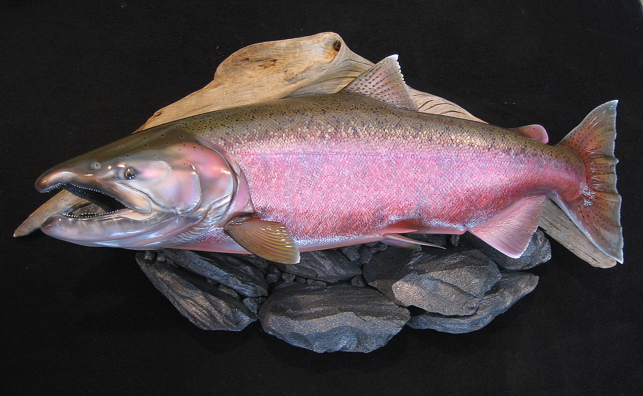 Alaskan spawning king salmon fish replica Luke Filmer Blackwater