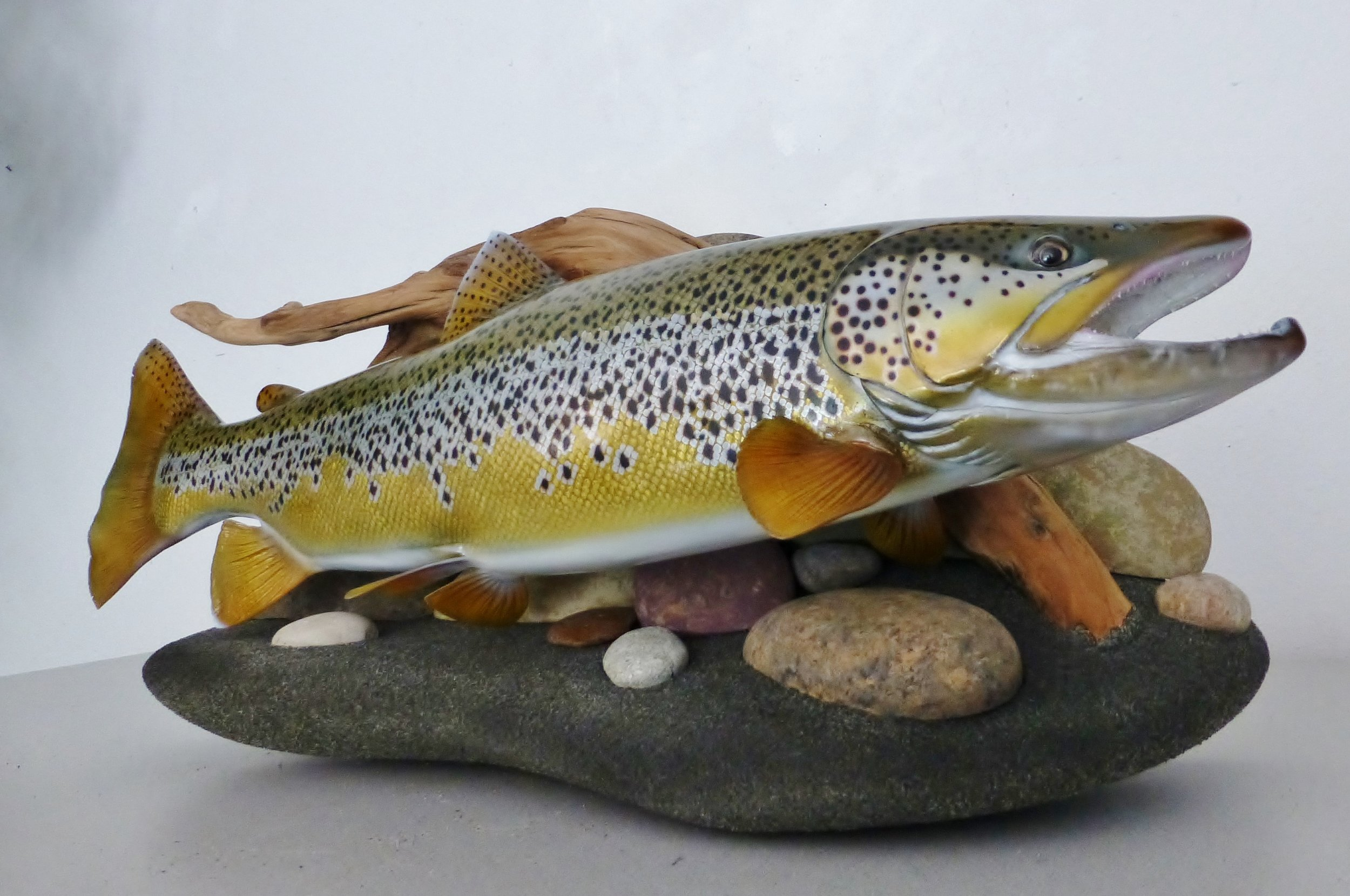 Brown Trout fish replica art sculpture Luke Filmer Blackwater Replicas