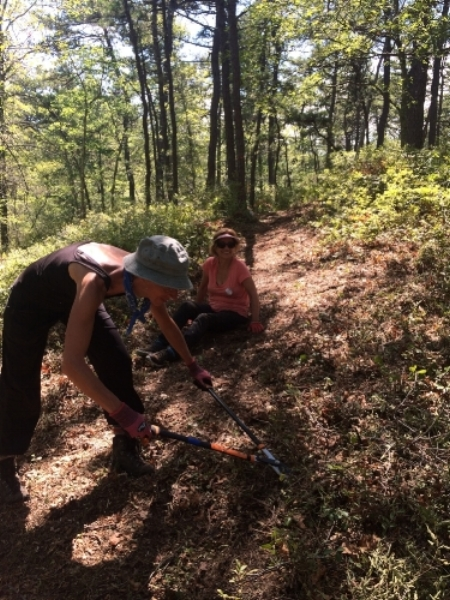 Sierra Club volunteers blaze a trail in the hot August heat!