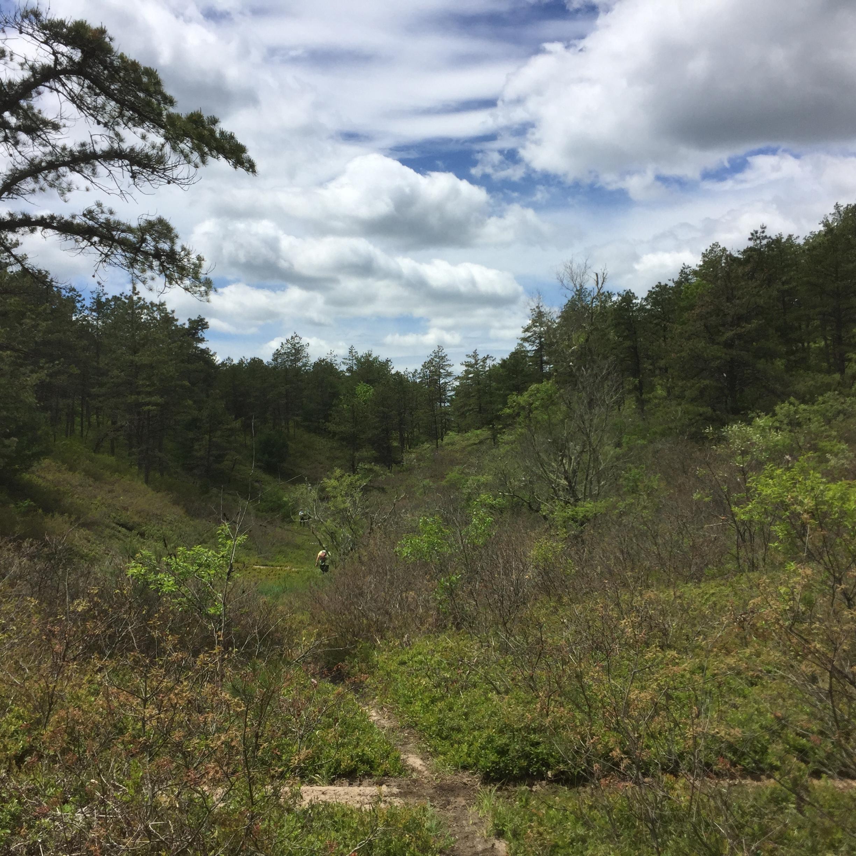 Cherry Pond Valley (Part I)