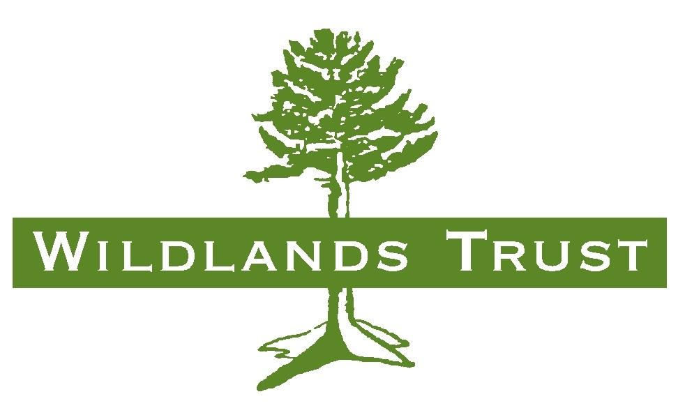 WT logo with name_centered.jpg
