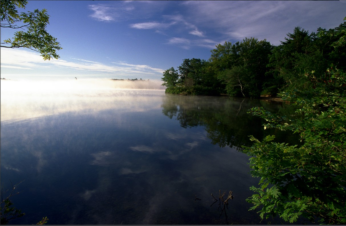 Early morning mist at Halfway Pond.