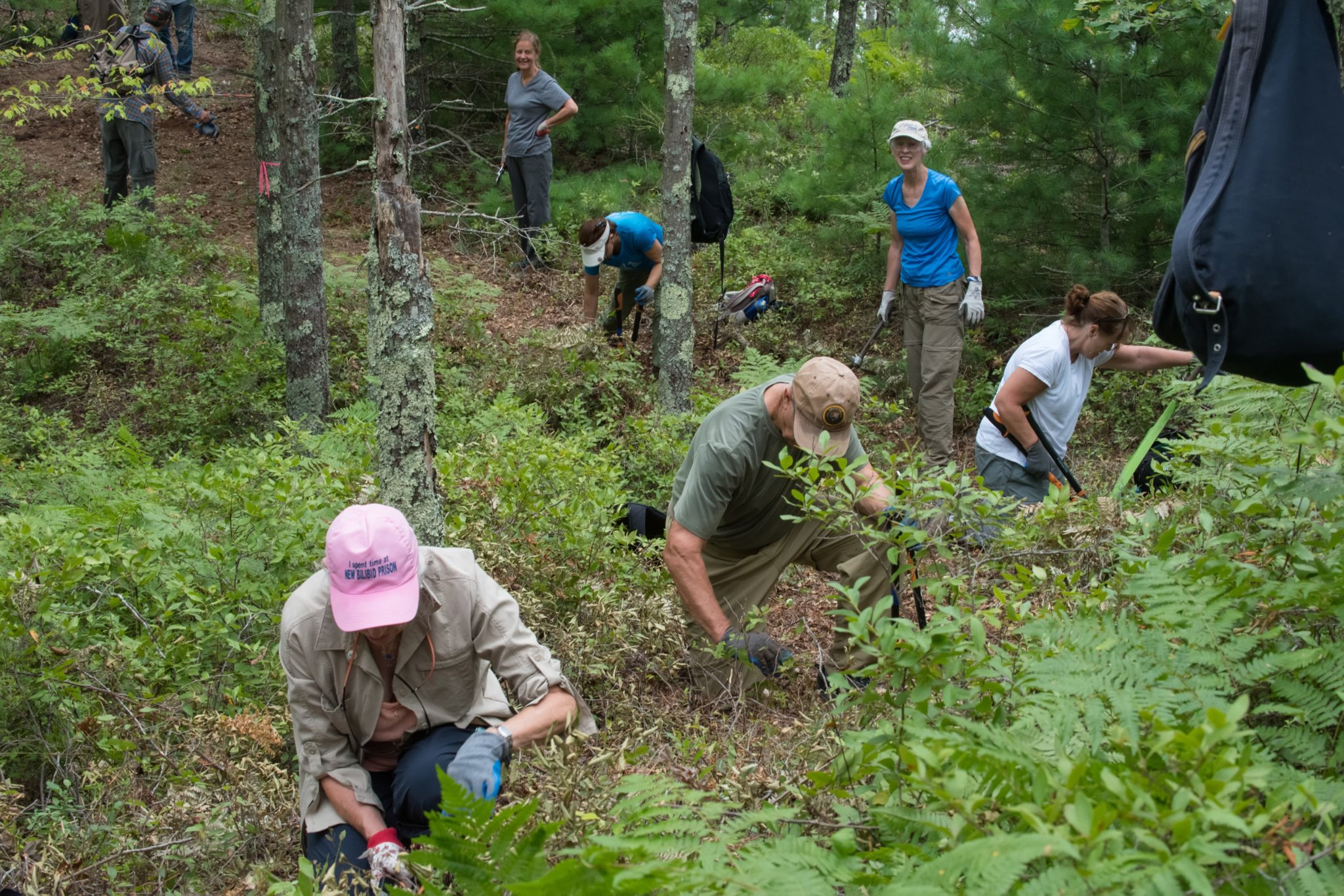 Sierra Club volunteers working together on a trail in Plymouth in 2017.