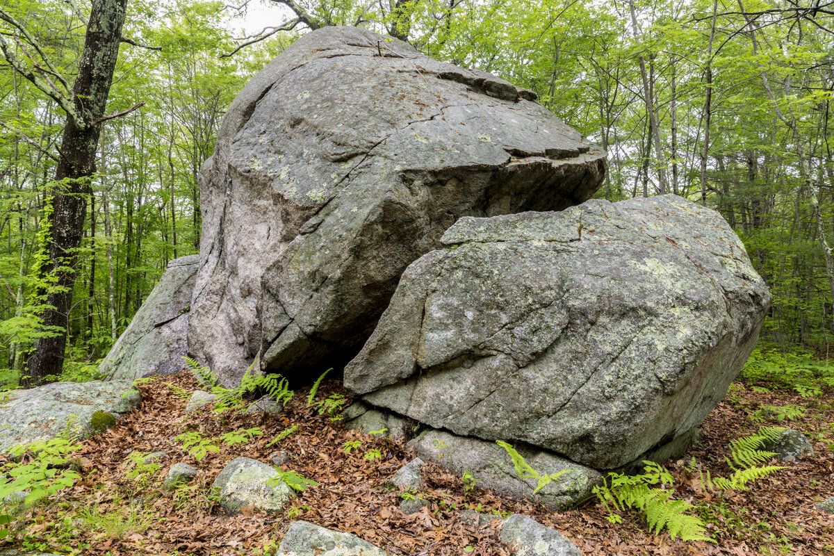 This 20-foot glacial boulder can be found in the middle of the Brockton Audubon Preserve.  Learn more about the preserve…