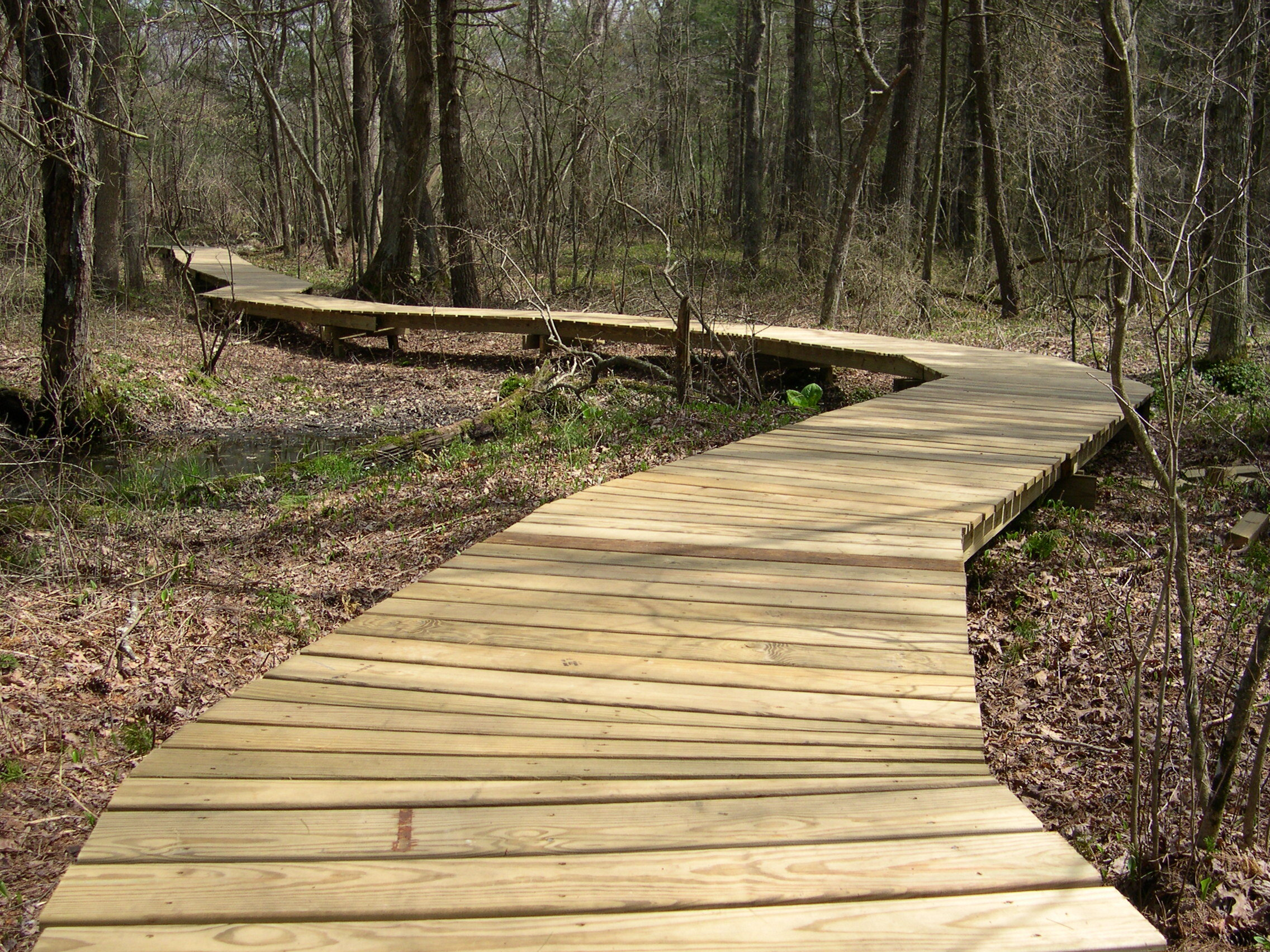 Winding boardwalks help protect wetlands and improve visitor experience at Willow Brook Farm.   Learn more about the preserve…