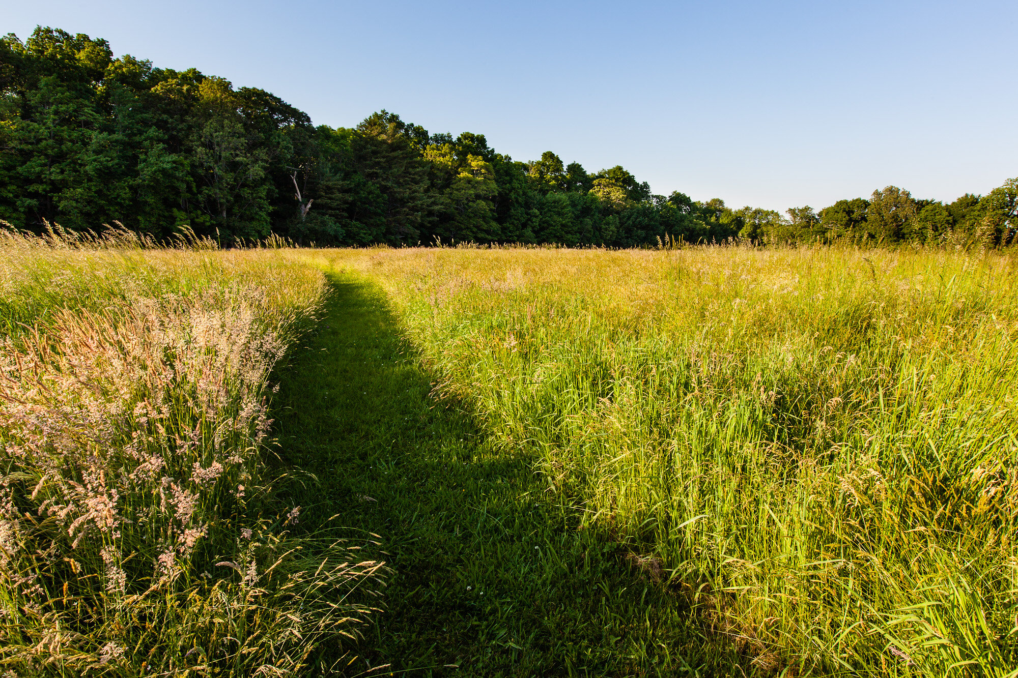 Located uphill from the North River and contiguous with four other protected natural areas, Phillips Farm Preserve is at the heart of an area in which you'll find an abundance of natural and historical resources.  Learn more about this preserve…