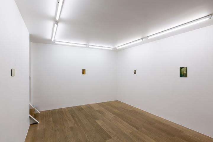 Barbara Cardone.  Vanishing Point and Other Camouflage  (Exhibition view – ground floor)
