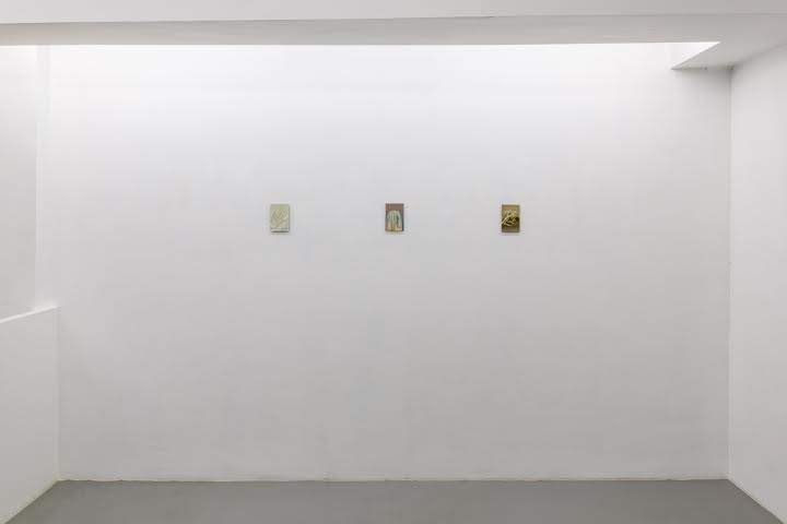 Barbara Cardone.  Vanishing Point and Other Camouflage  (Exhibition view – upper floor)