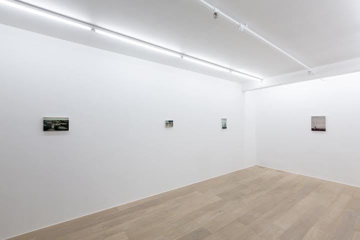Carolina Fernandez.  The Middle Way  (Exhibition view)