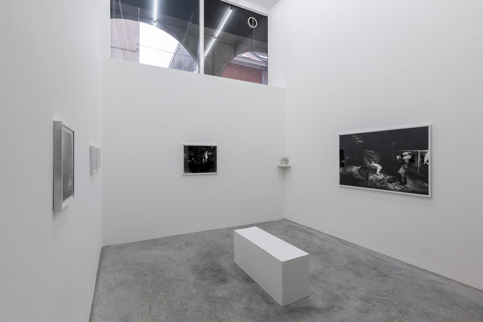 François Jacob. De l'ombre, la mesure Exhibition view (detail)