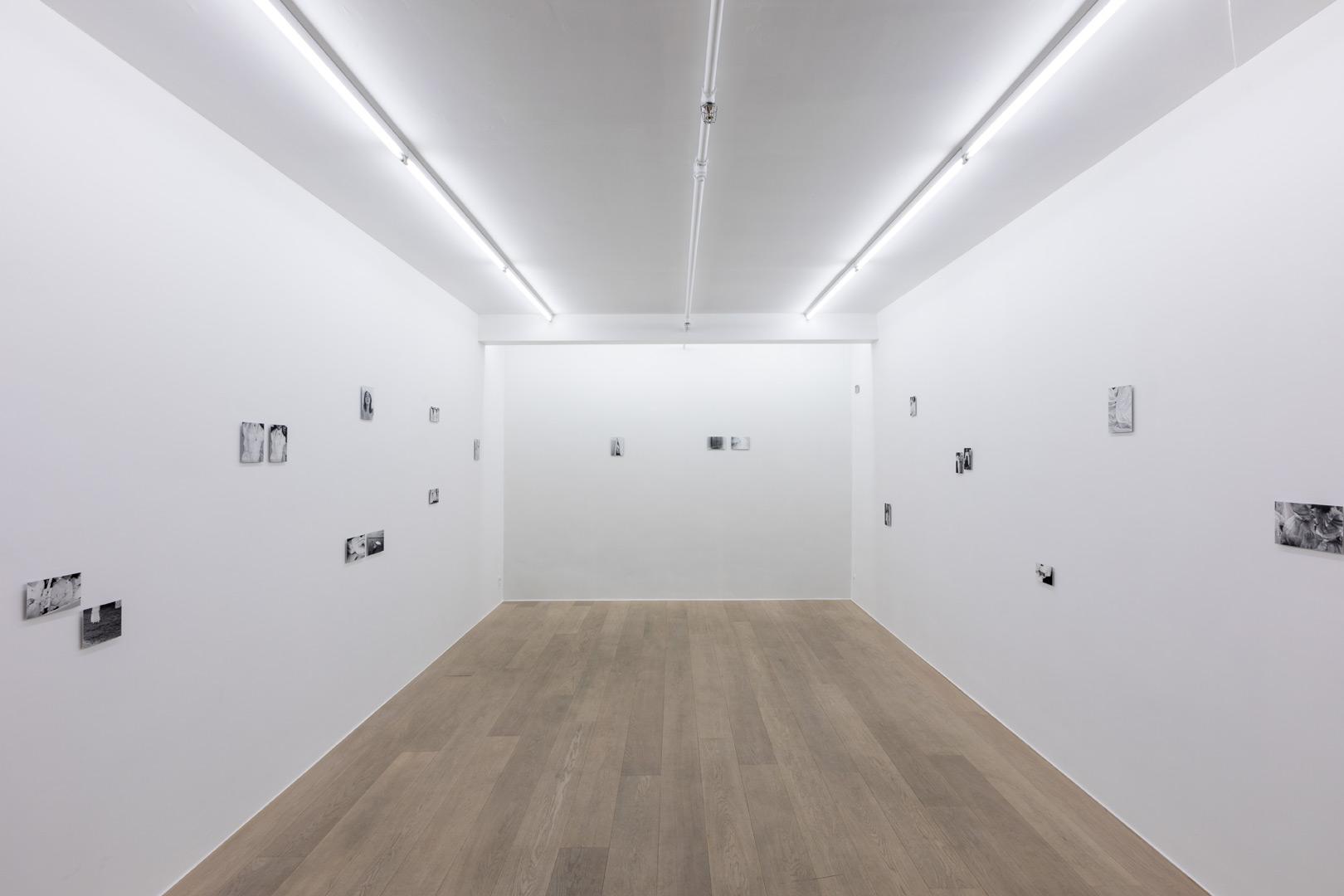 Wiktoria Synak.  Cialo   Exhibition view