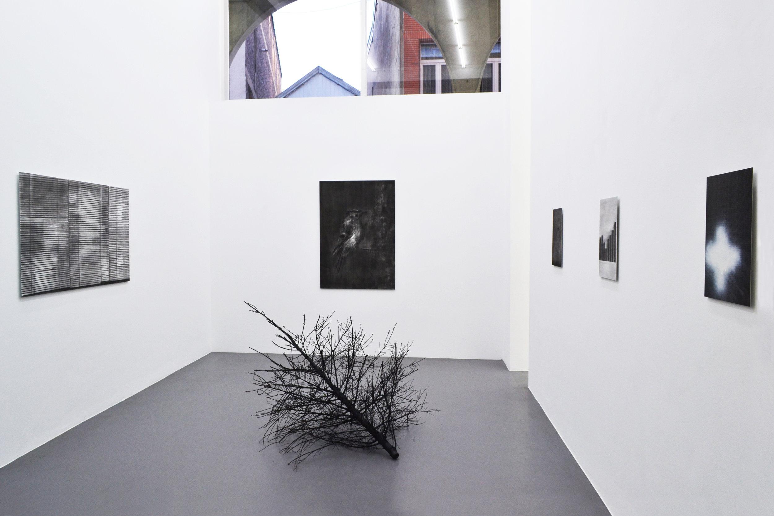 Jean-Louis Micha.  Considérations Domestiques (Provisoires)  Exhibition View
