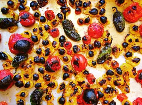 tomatoes1crop.jpg