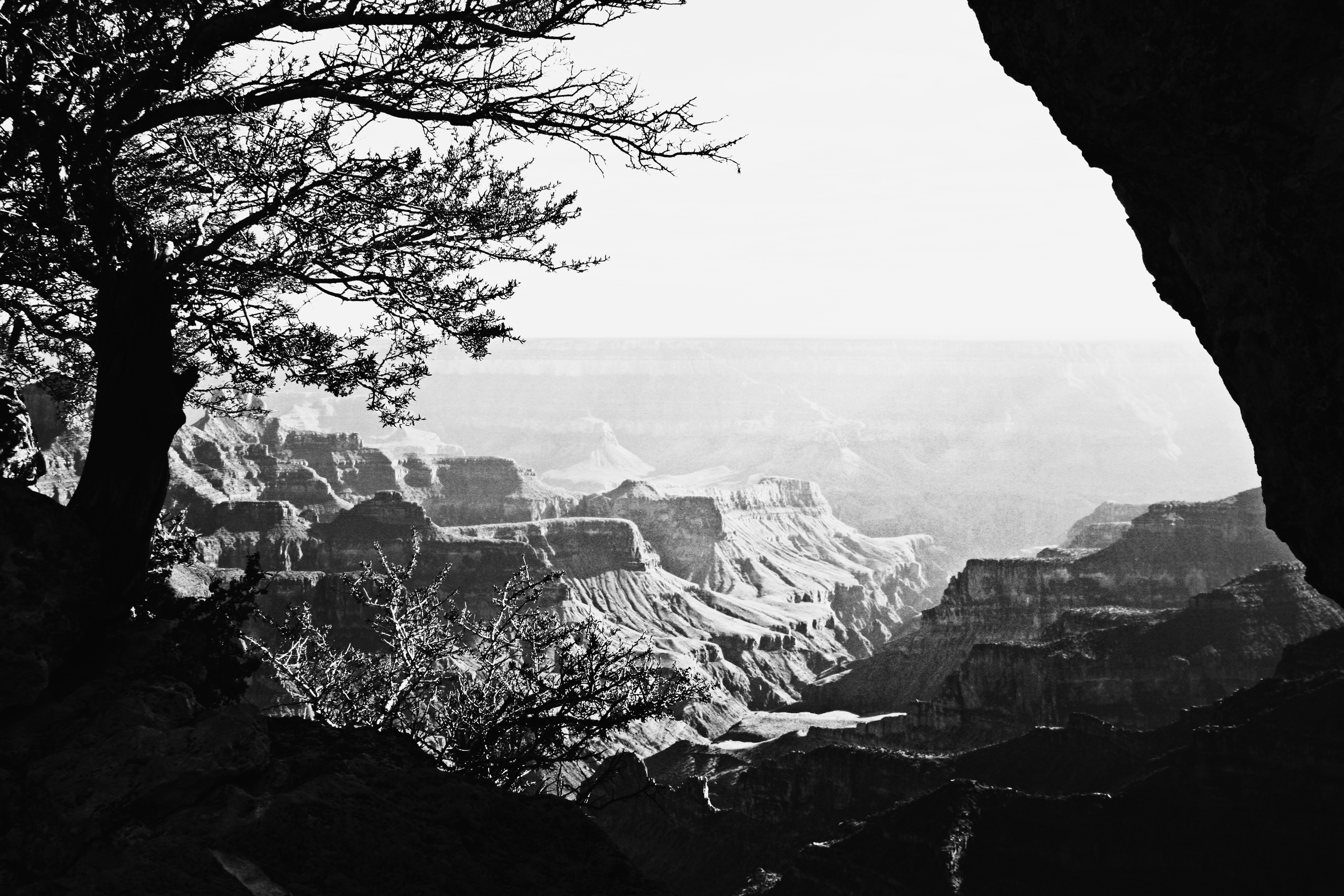 Mattie_Kannard_Grand_Canyon_North_Rim_2015.jpg