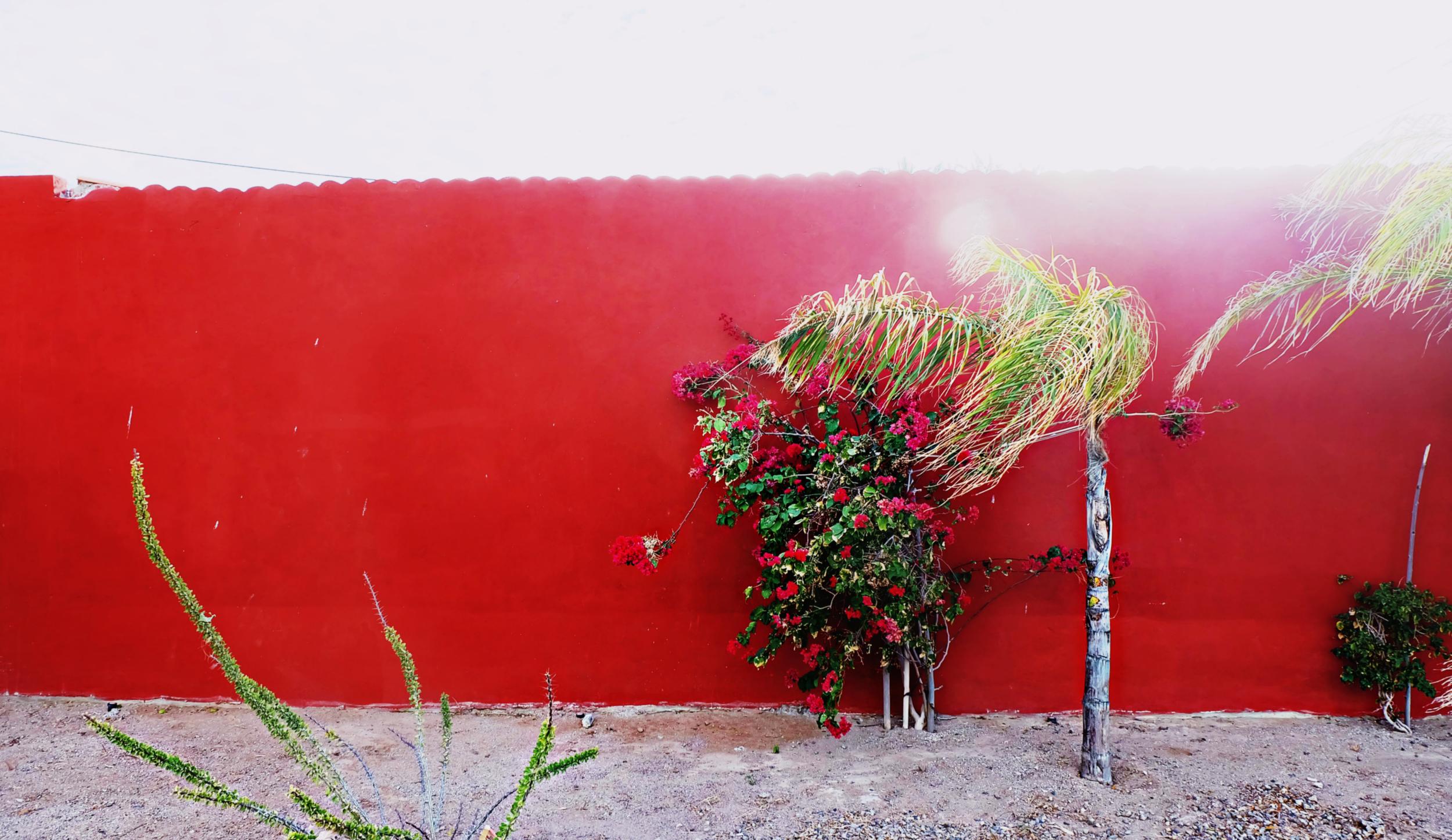 Mexico_Bajia_de_Kino_Red.jpg