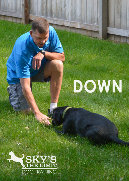 Down.png