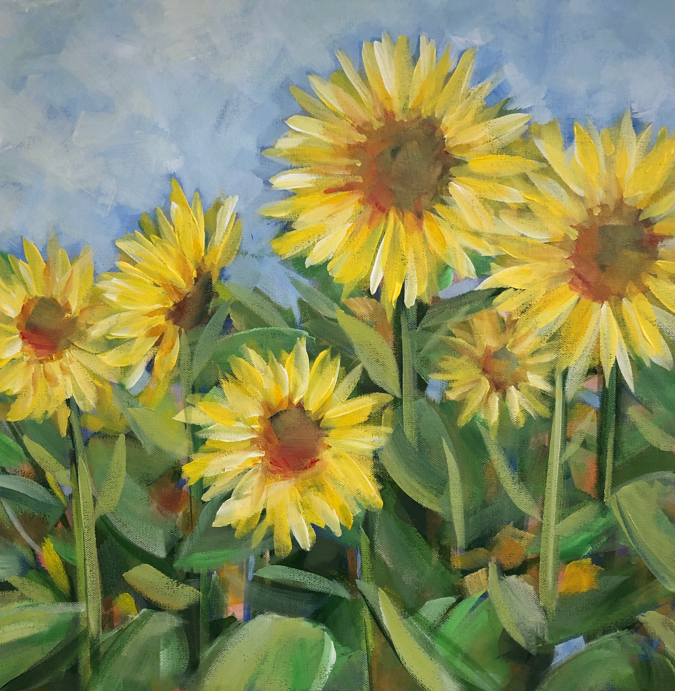 Sunflowers - 2019