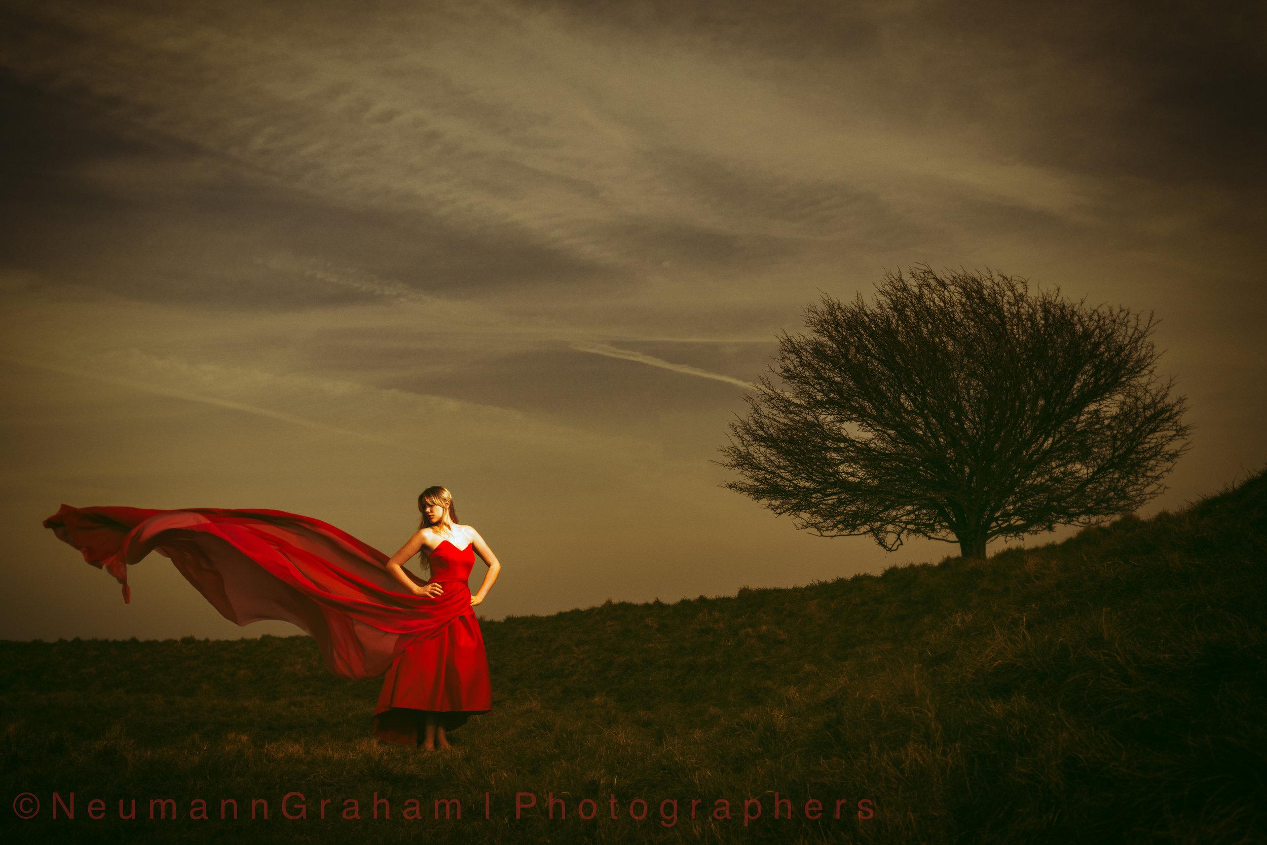 Emma White Horse Hill Tree-1.jpg