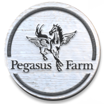 pegasus_farm.png