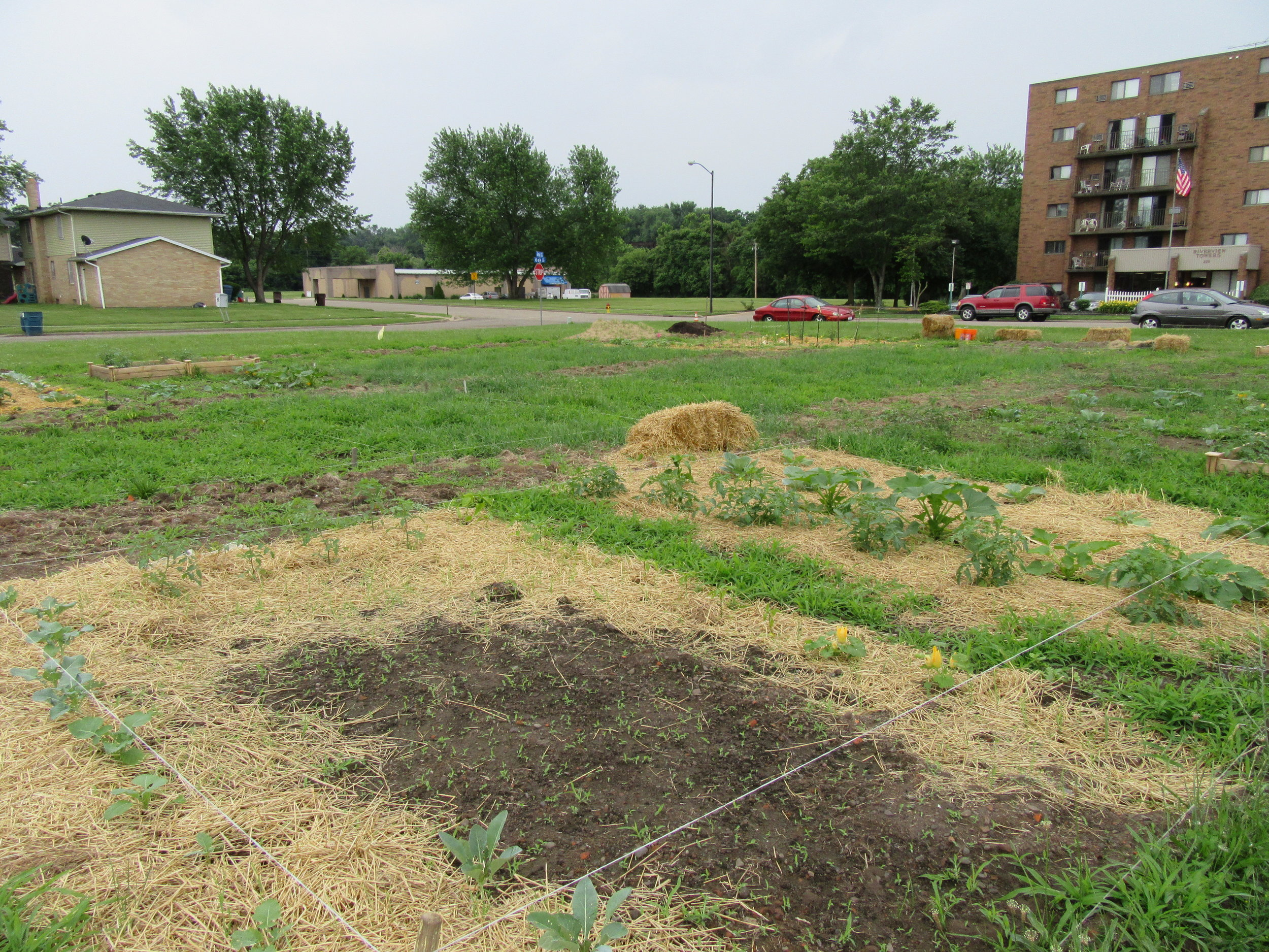 ROW 22 - Community Garden at St James AME.JPG