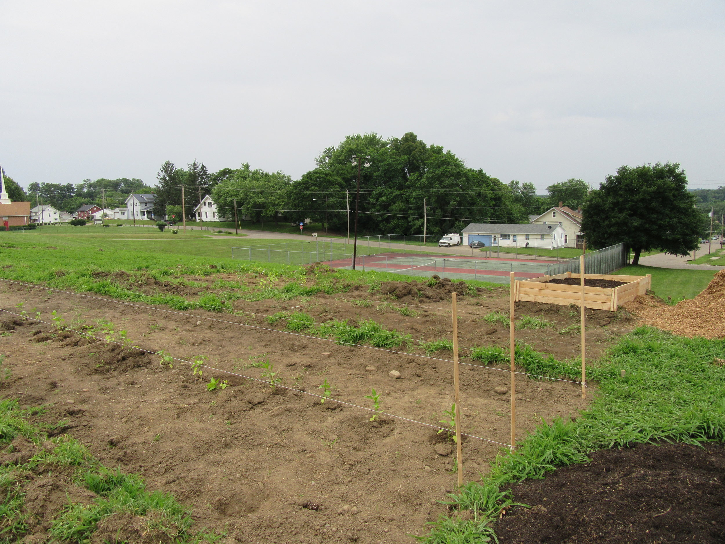 ROW 20 - Community Garden at Franklin Park.JPG