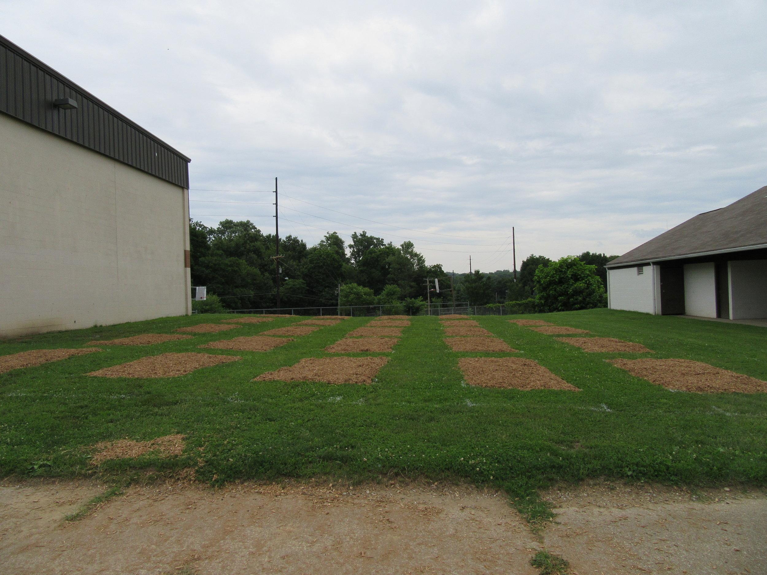 ROW 21 - Community Garden at Massillon Boys & Girls Club.JPG