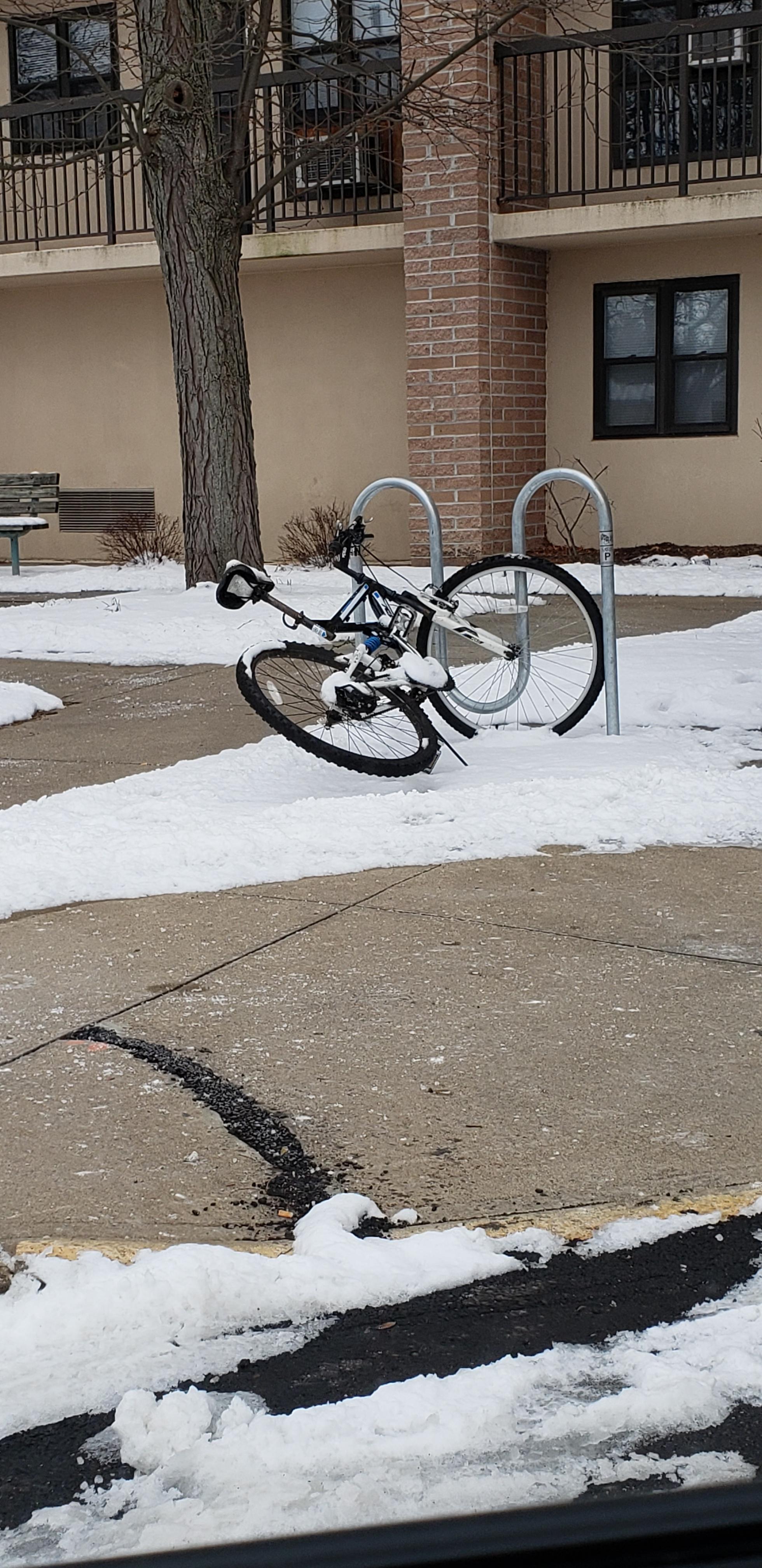 ROW 83 - Bike Rack - Lincoln Apartments.jpg