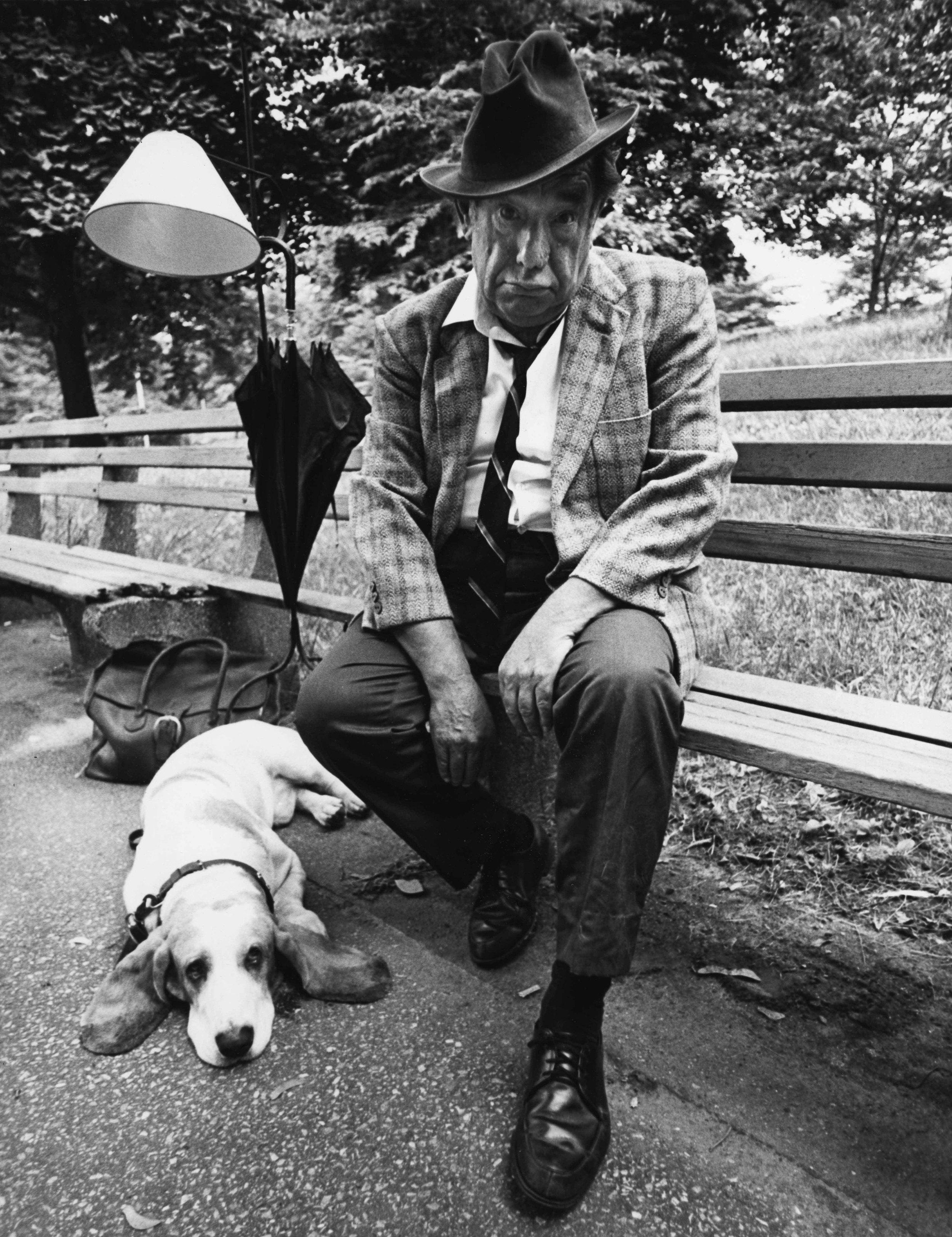 16_9_Man and dog in the park_Dan Wynn Archive.jpeg