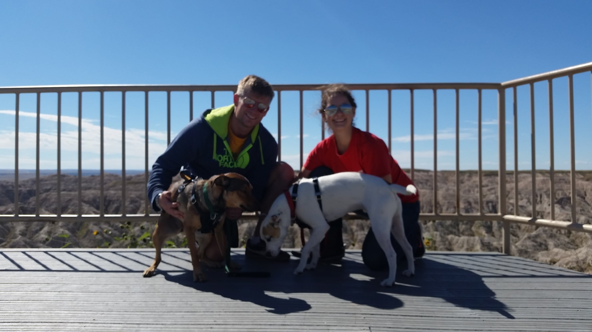 Visiting the Badlands. The dogs are looking just thrilled!