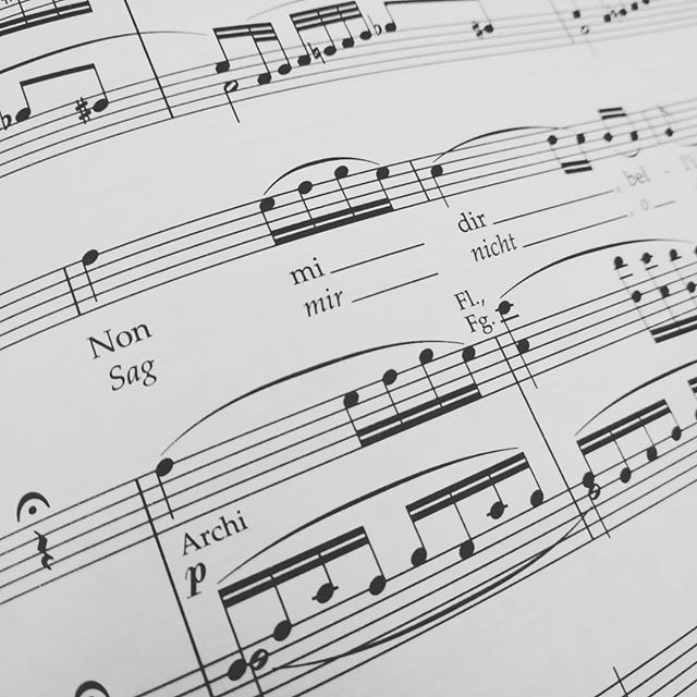 Working on score study today. Audition season will be here before you know it! . . . . #newrep #newfach #soprano #classicalsinger #operasinger #nonmidir #donnaanna #dongiovanni #mozart