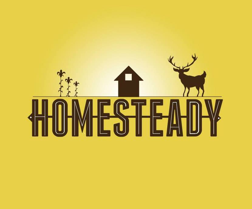 homesteady.jpg