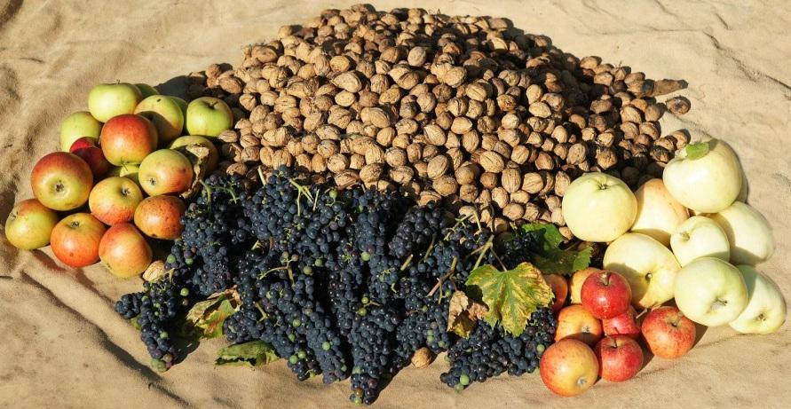 nuts-fruit-DSC03519-900x599.jpg