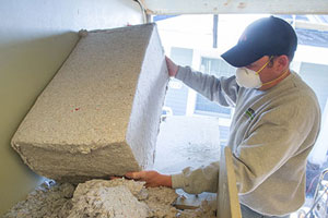 CHAD LOADING CELLULOSE INTO HOPPER -