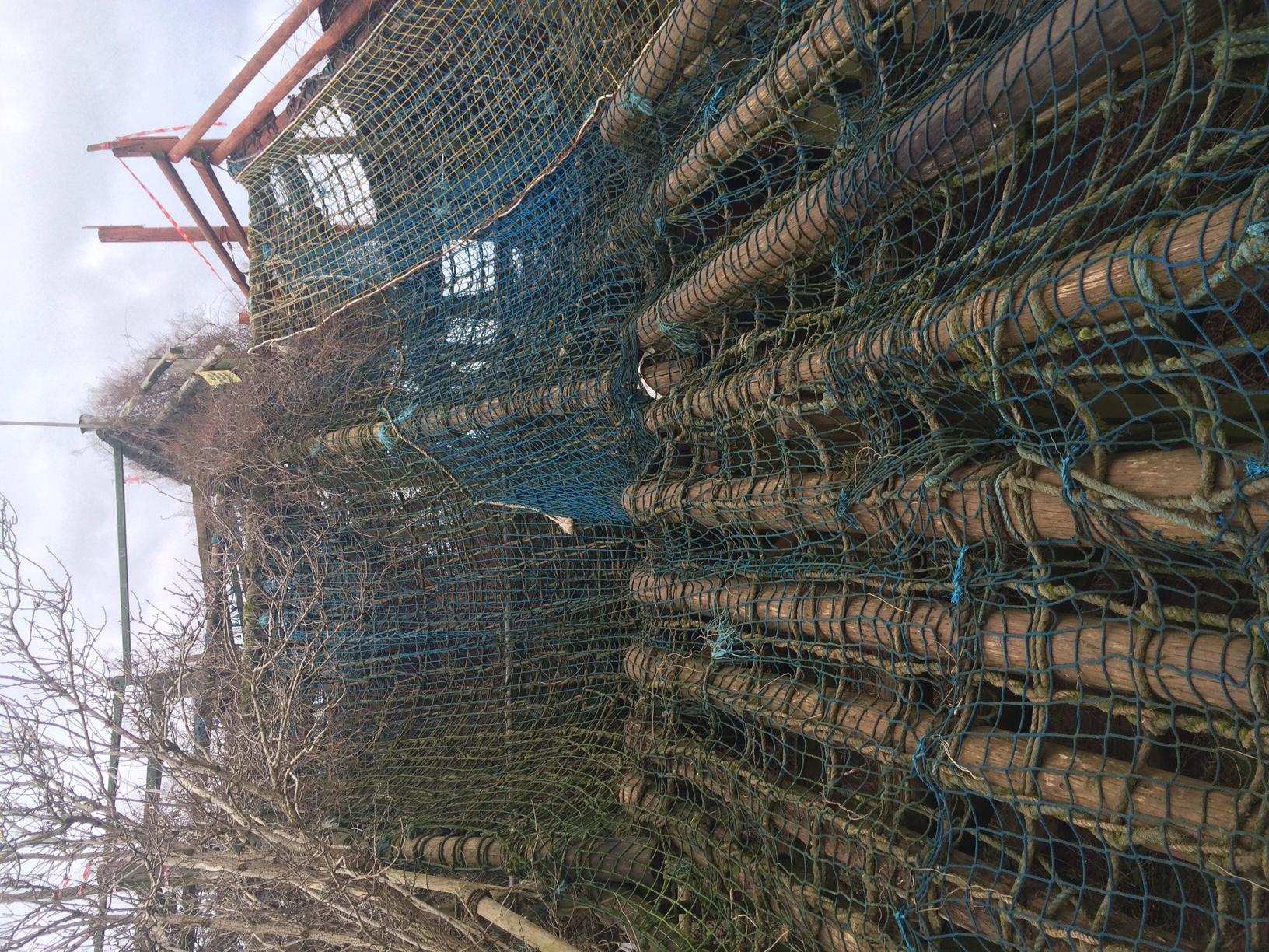 TG 2015 - nets nets and more nets.jpeg