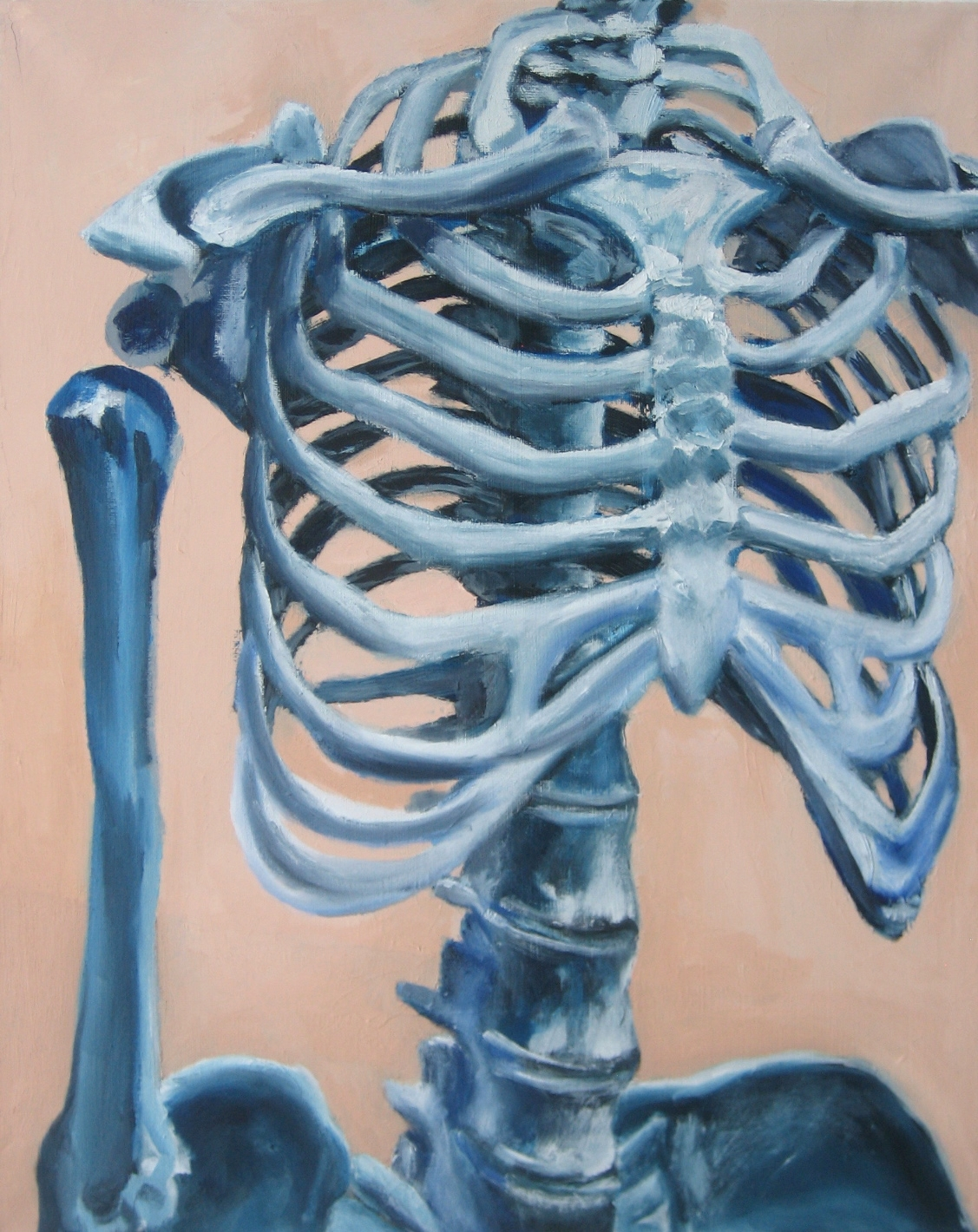 Study of Skeleton