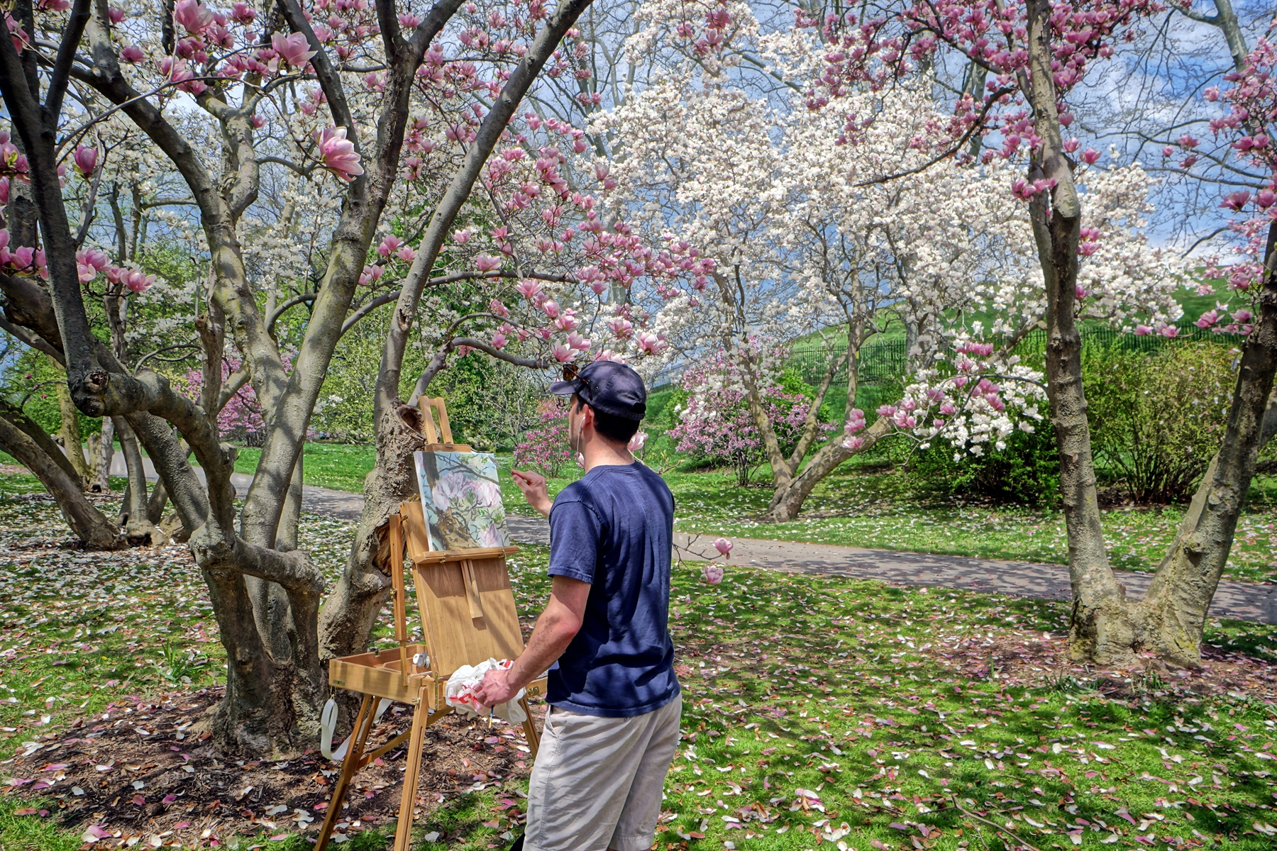 Painting in Highland Park, Rochester, NY, May 2018