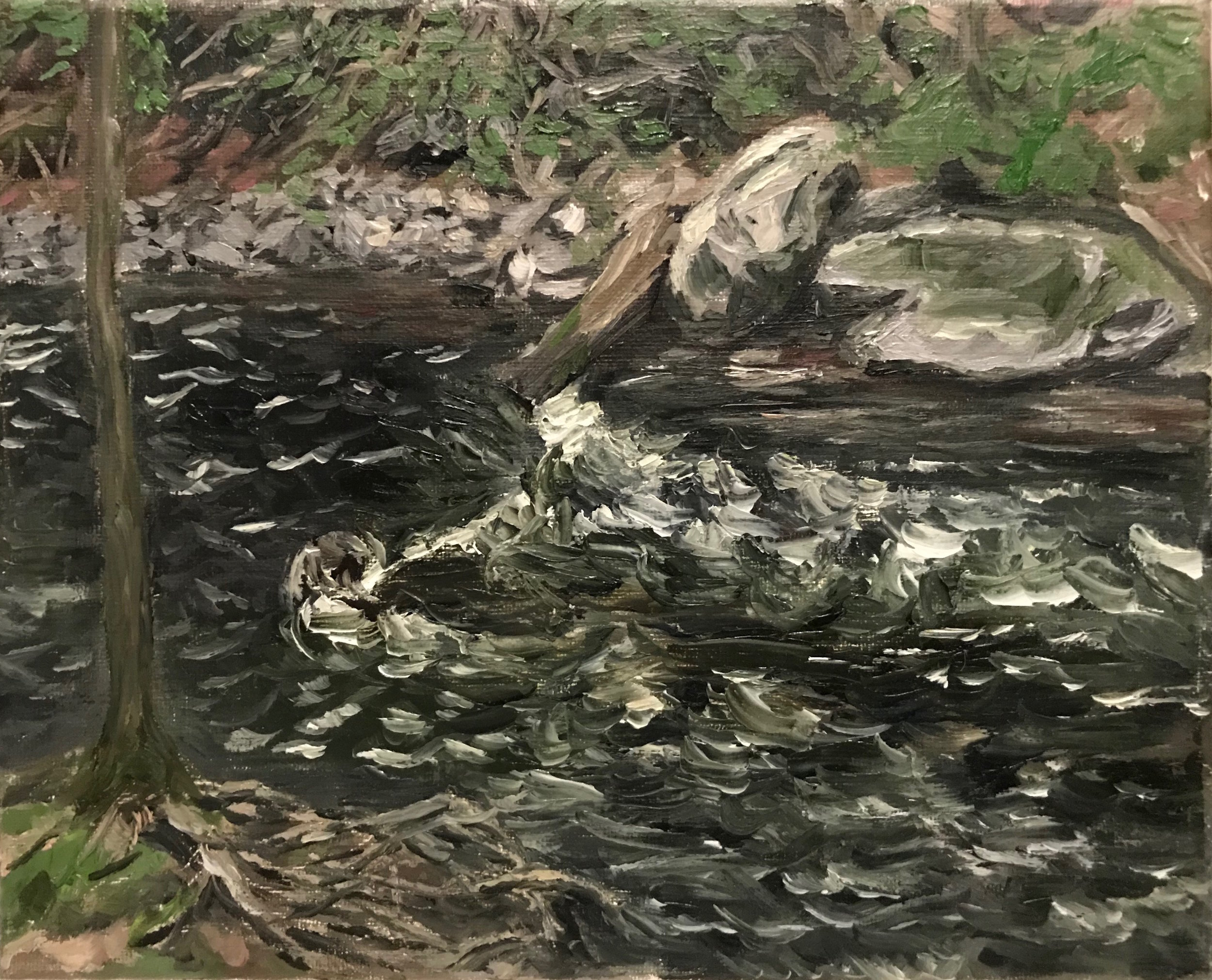Black Creek, May