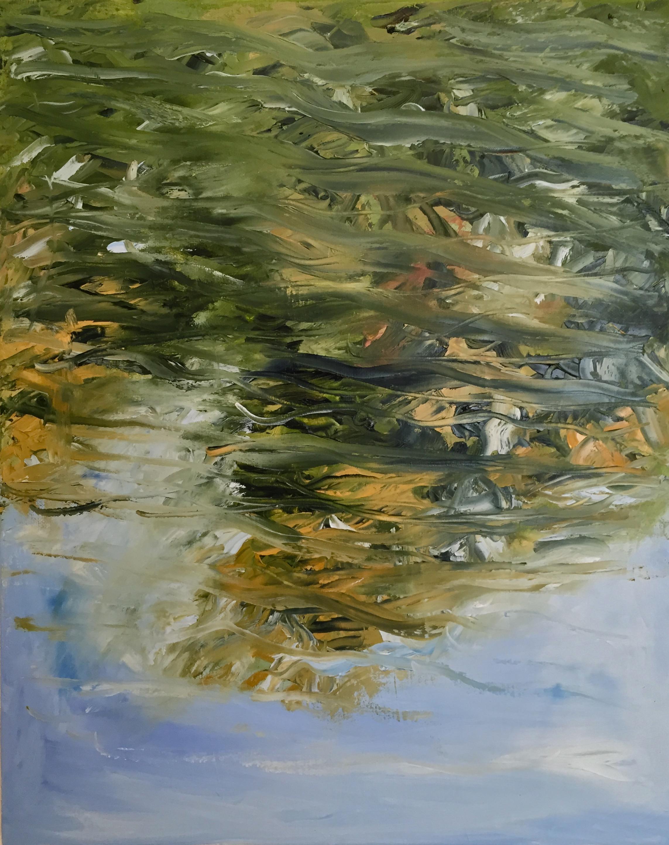 Study of Reflection, Prospect Park Lake