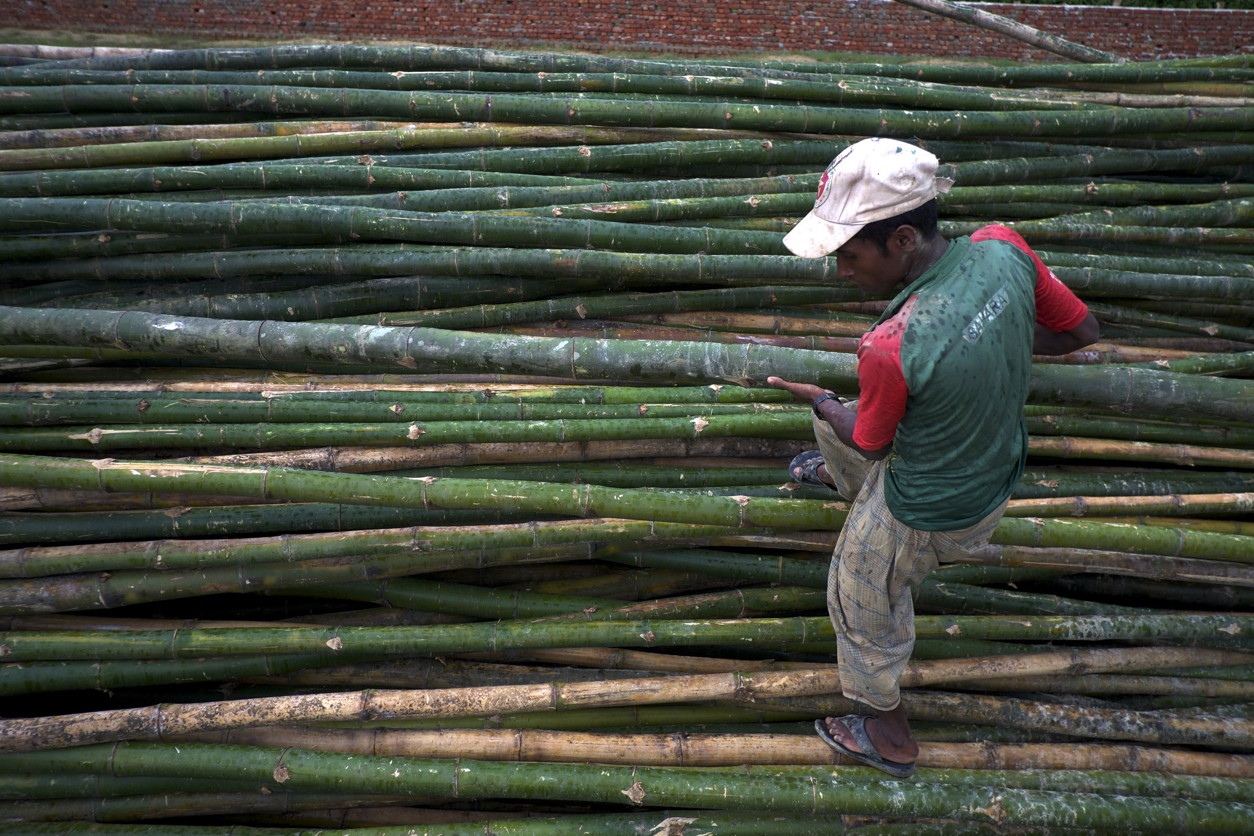 A Rohingya man climbs on a stack of bamboo poles to select one to rebuild his house. (Credit: Dene-Hern Chen)