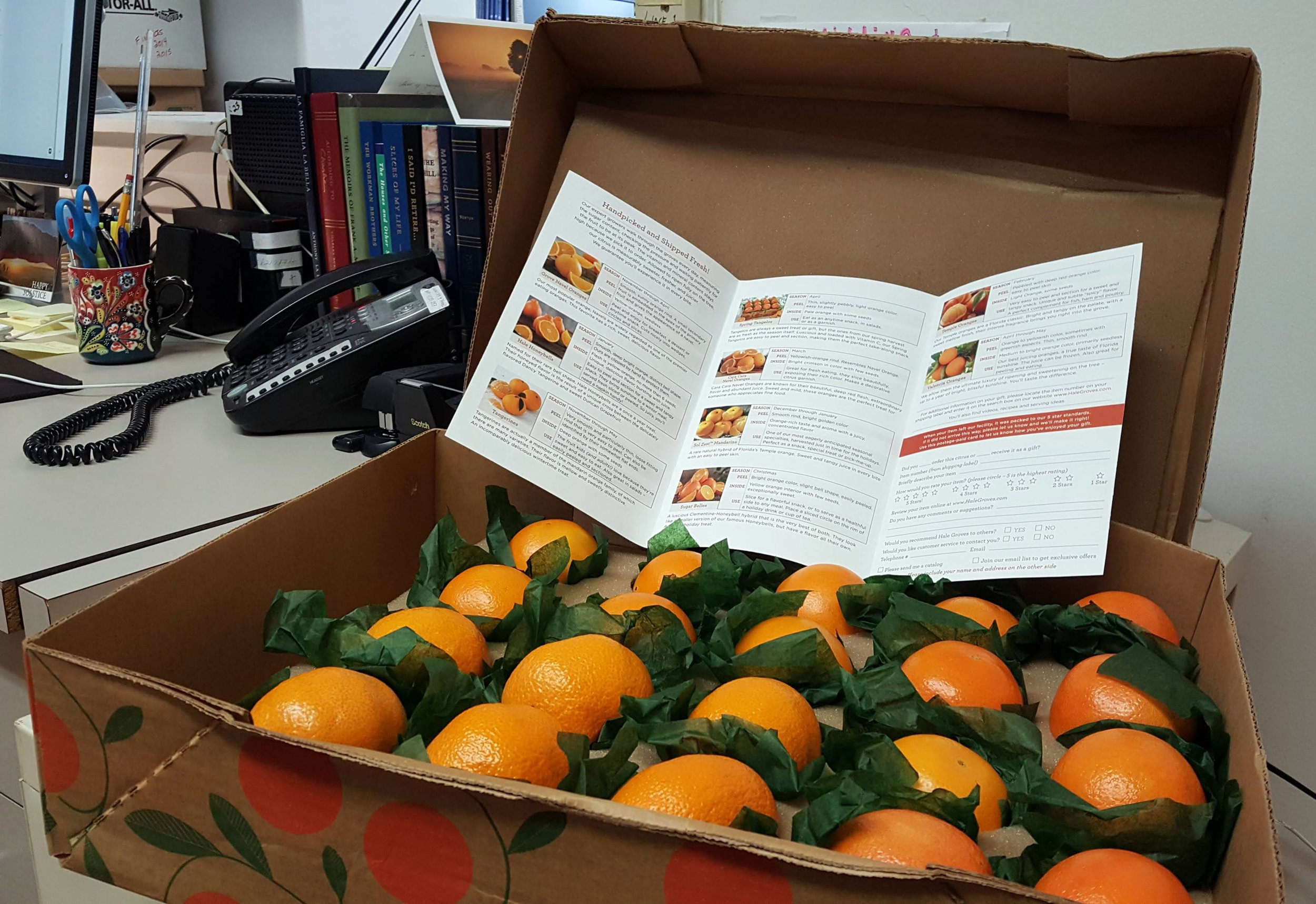A client's holiday gift of delicious oranges