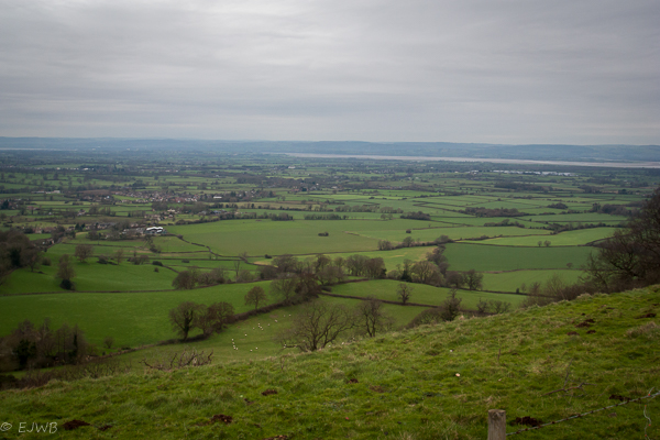 Viewpoint,Nympsfield Long Barrow
