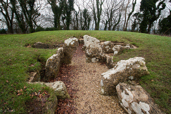 The Long Barrow (English Heritage)