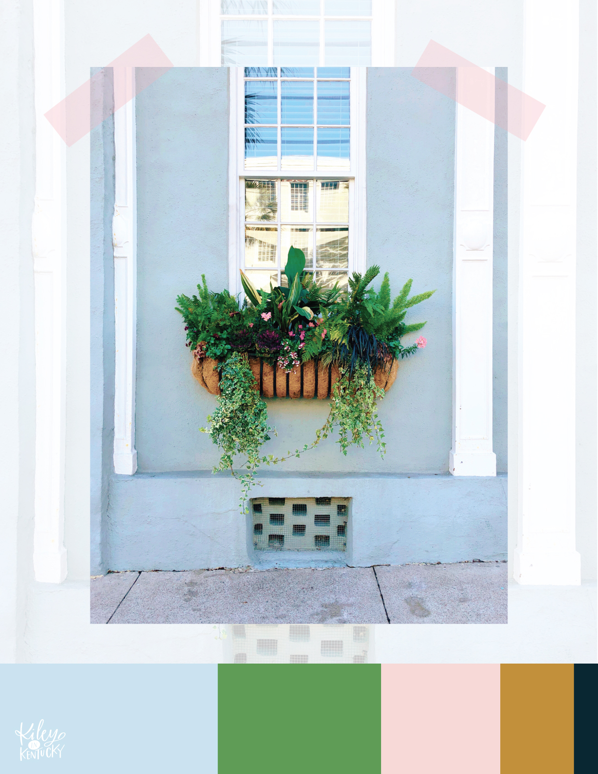 Charleston has the most beautiful, lush window boxes ever! I hope my thumb is green enough for some in my future home.