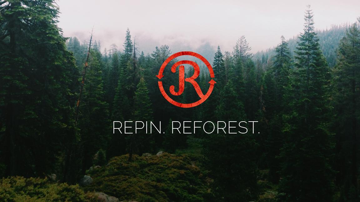 REPIN.jpg