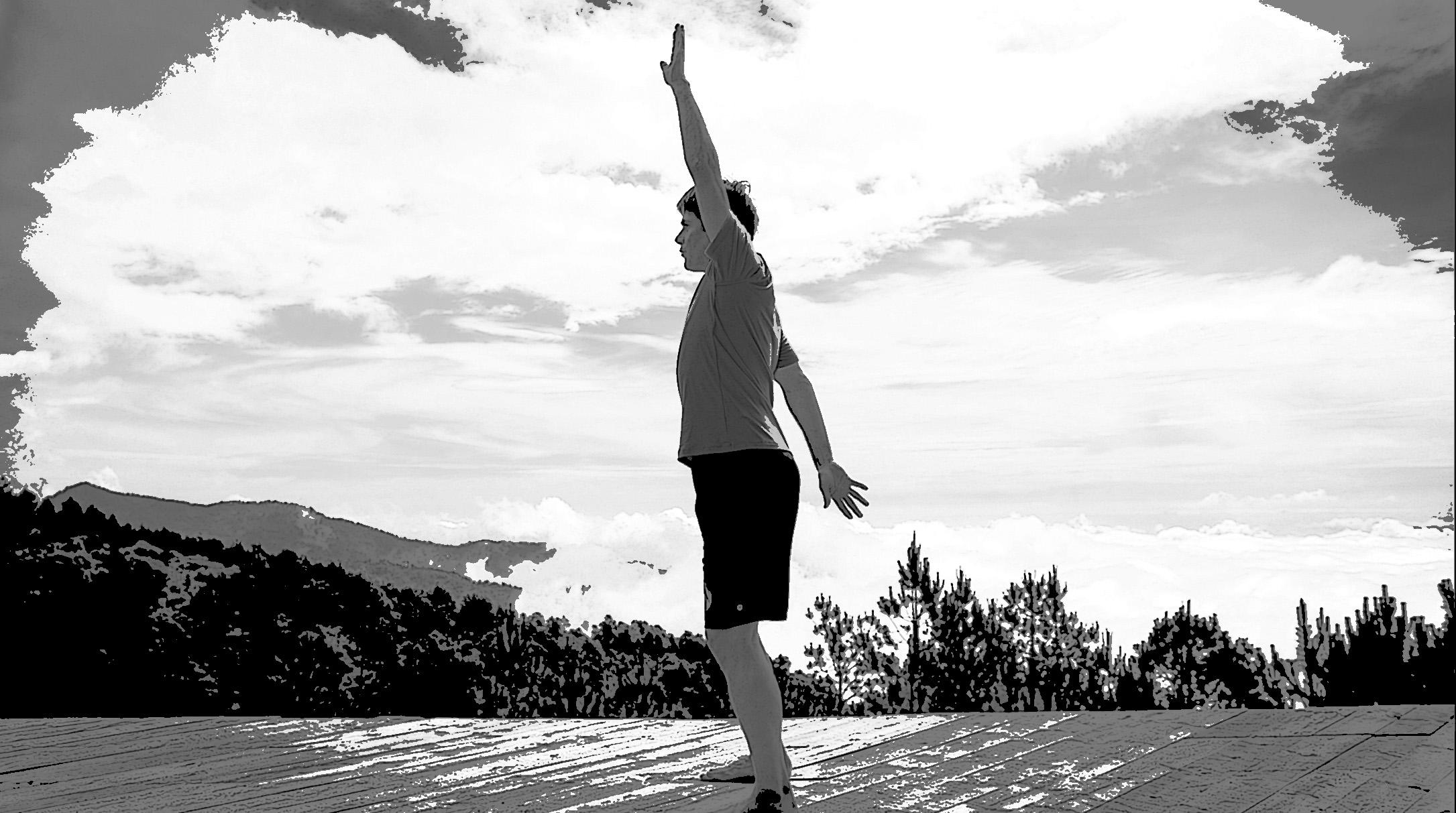 Whartons Flexibility Zone ® Two - Forward Elevation of Shoulder